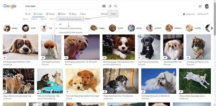 Google image screenshot